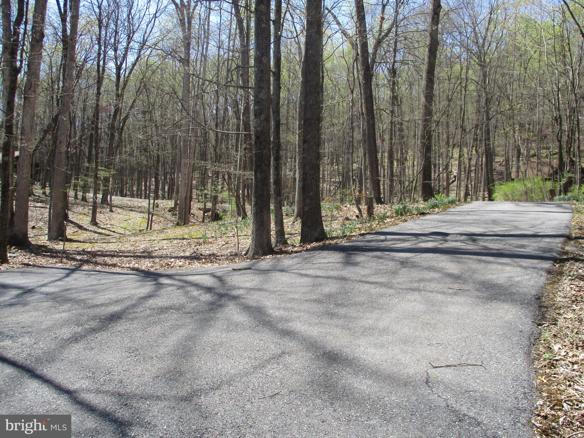 74 Dogwood Lane