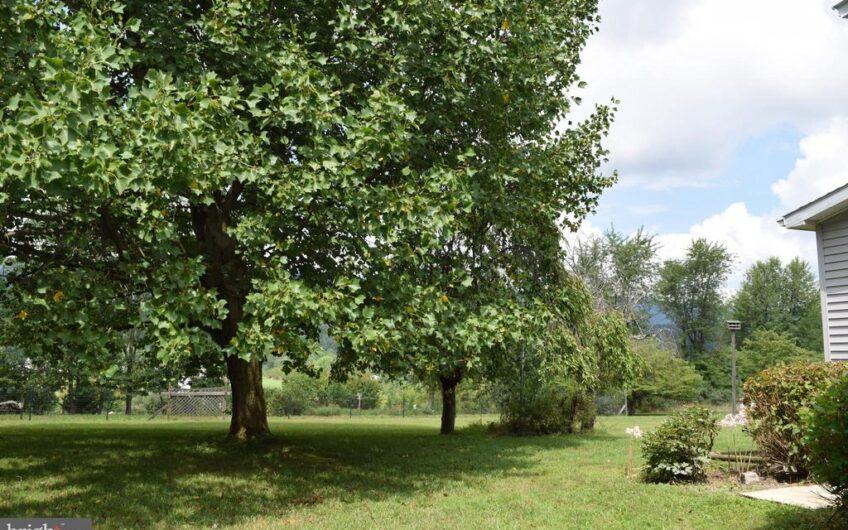75 Apple Orchard Ct
