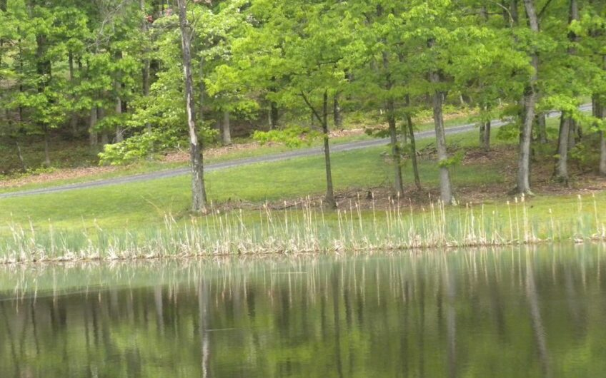 Twin Lakes Drive